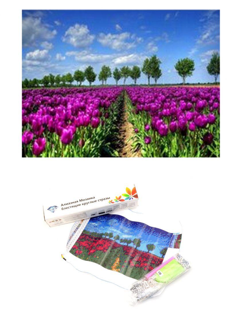 Алмазная мозаика  «Поле тюльпанов»