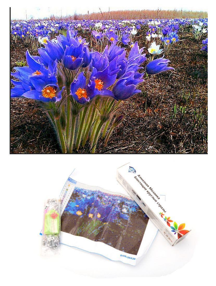 Алмазная мозаика «Поле синих цветов»