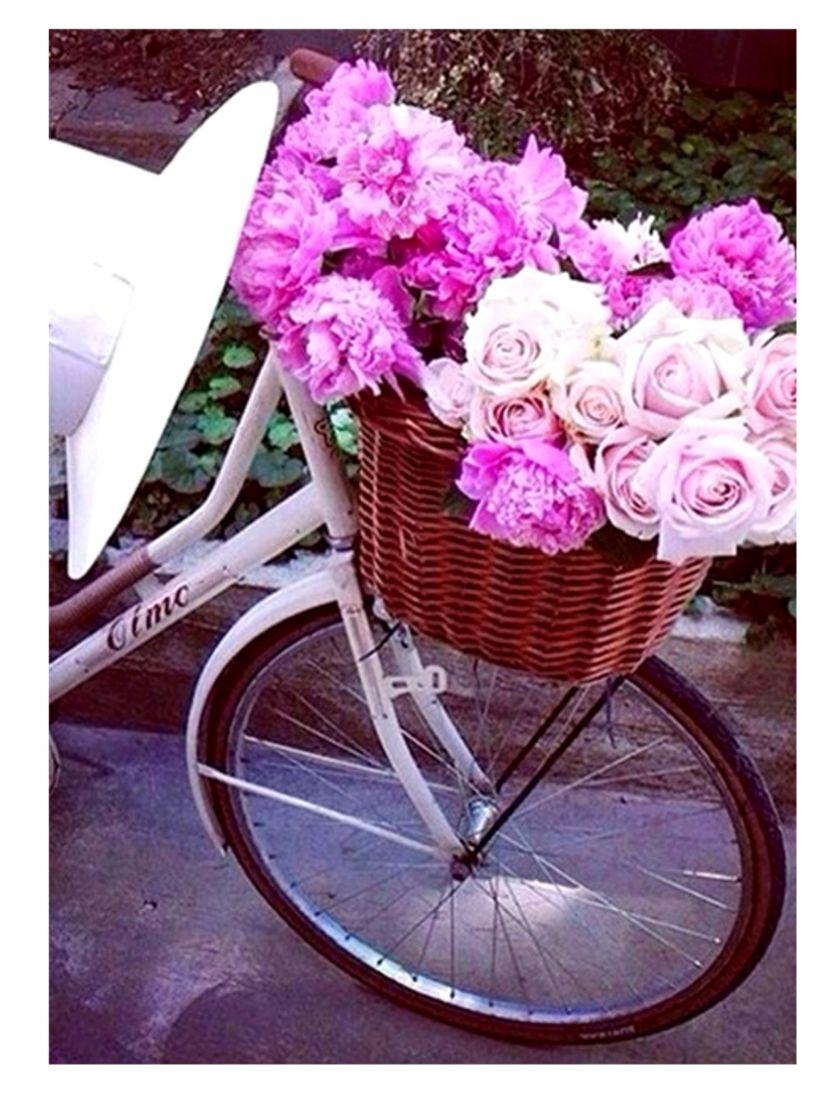 Алмазная мозаика  «Велосипед и пионы»