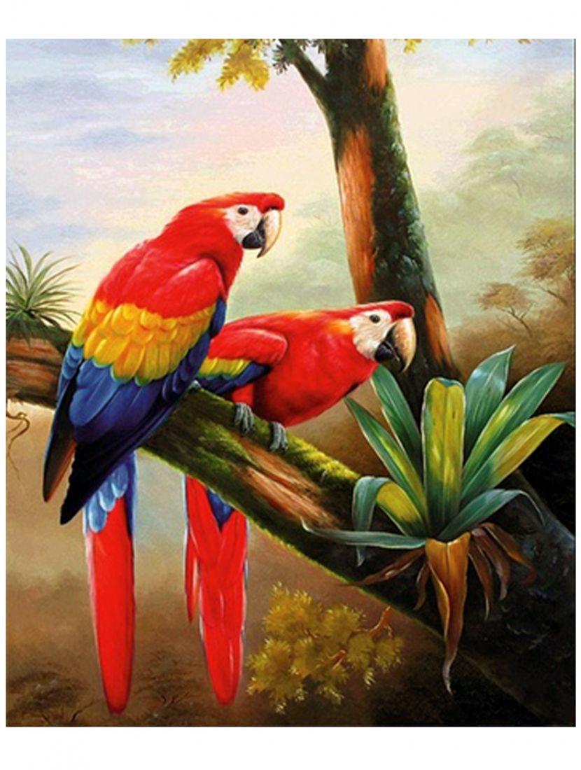 Алмазная мозаика «Попугаи ара»