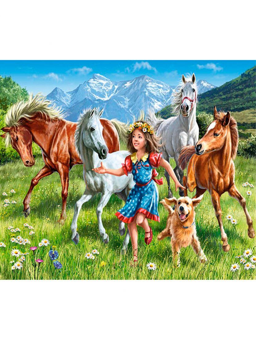 Картина по номерам  на подрамнике «Девочка и кони»