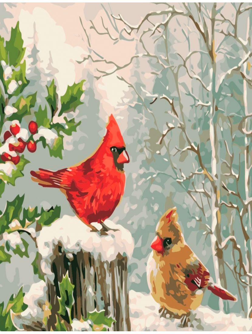Картина по номерам  на подрамнике «Птицы кардиналы»
