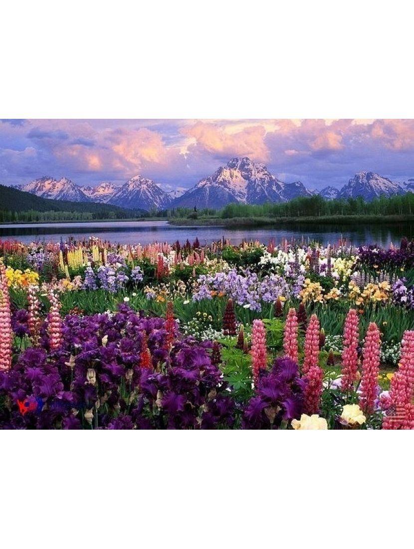 Алмазная мозаика «Горные цветы»