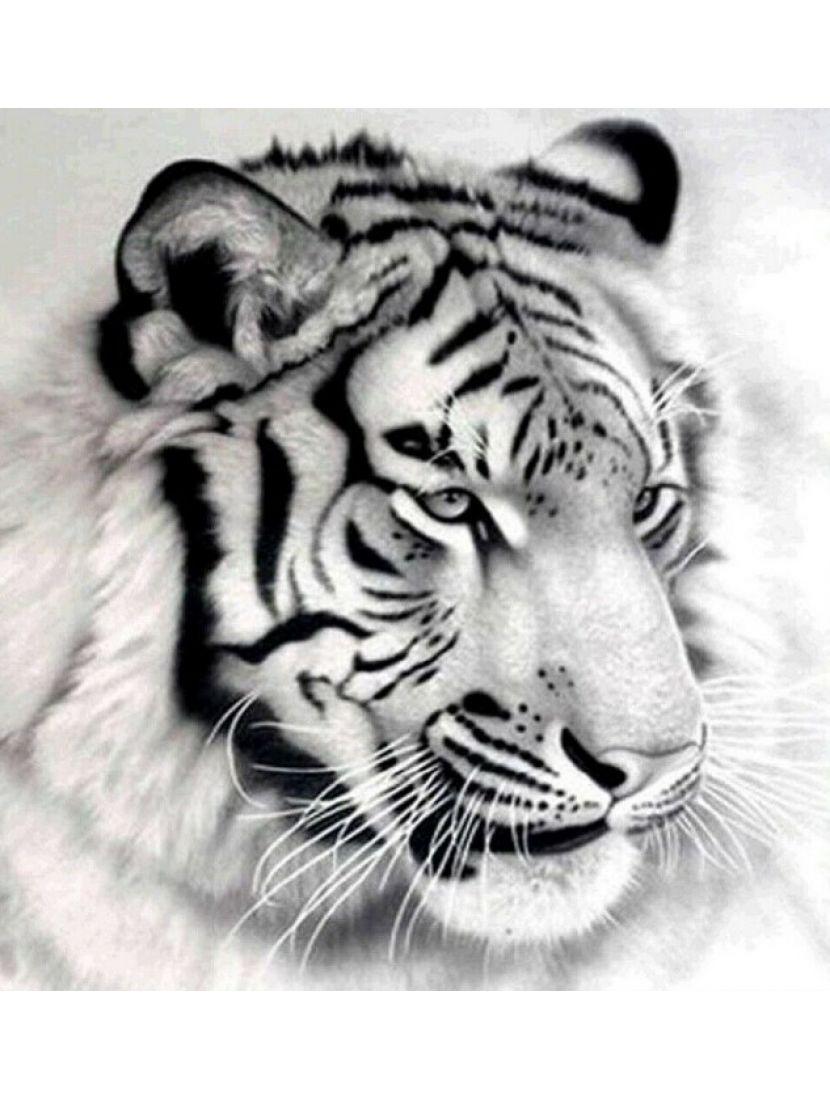 Алмазная мозаика «Белый тигр»