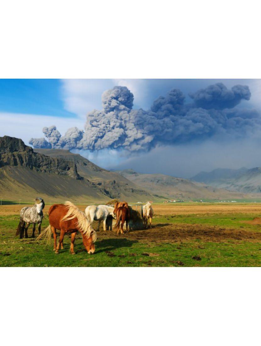 Пазл «Лошади и вулкан» 1000 элементов