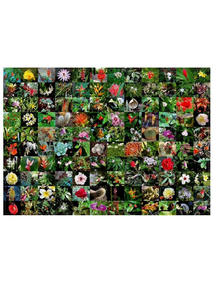 Пазл «Цветы» 1000 элементов