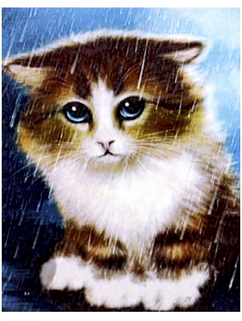 """Алмазная мозаика """"Несчастный котёнок"""""""