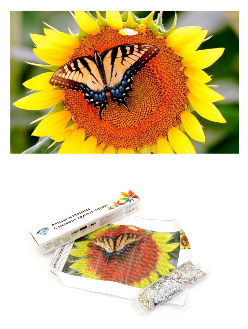 Алмазная мозаика «Бабочка на подсолнухе»