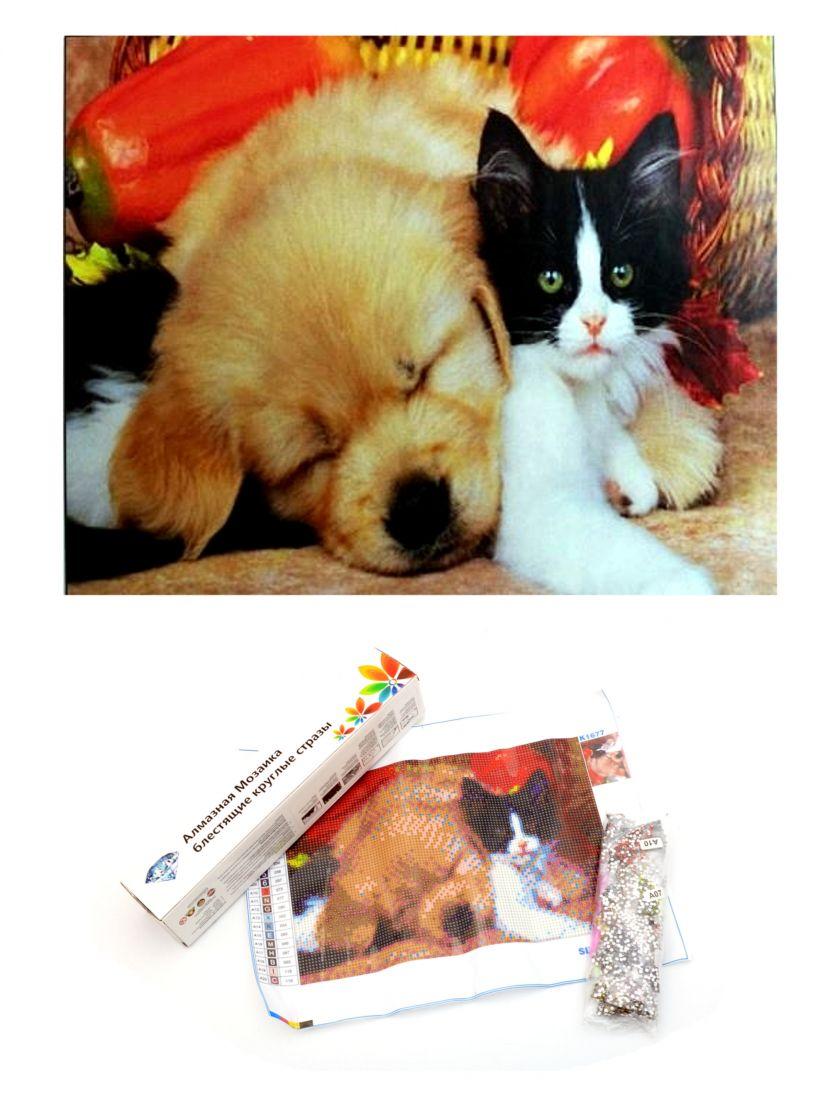 """Алмазная мозаика """"Котёнок и щенок"""""""