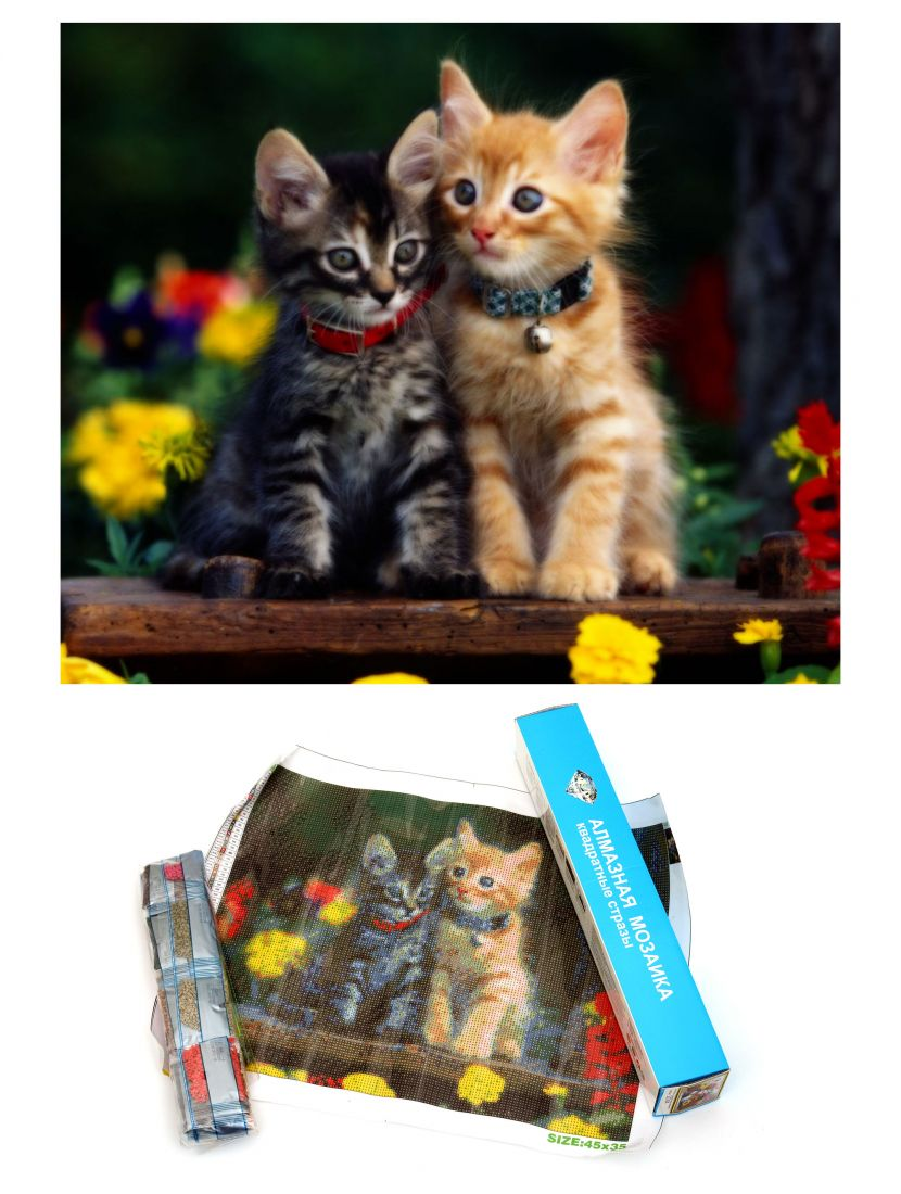 "Алмазная мозаика ""Котята"""