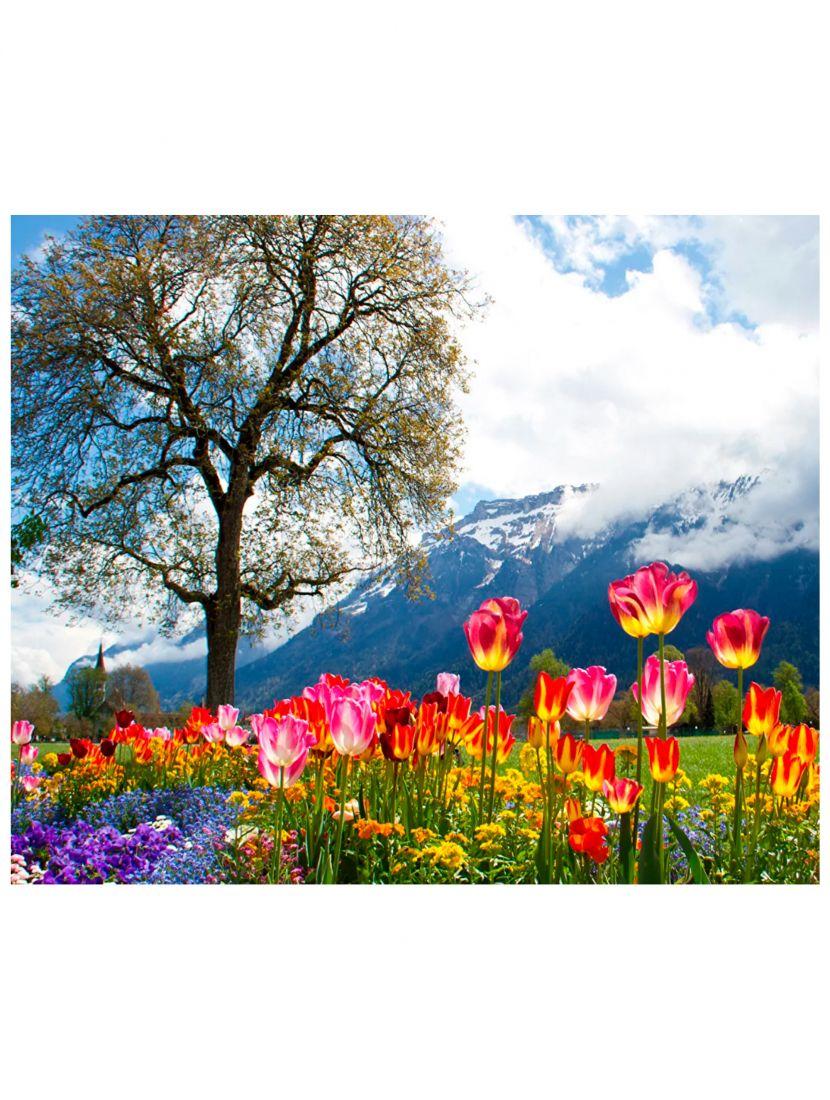 """Алмазная мозаика на подрамнике """"Цветы у гор"""""""