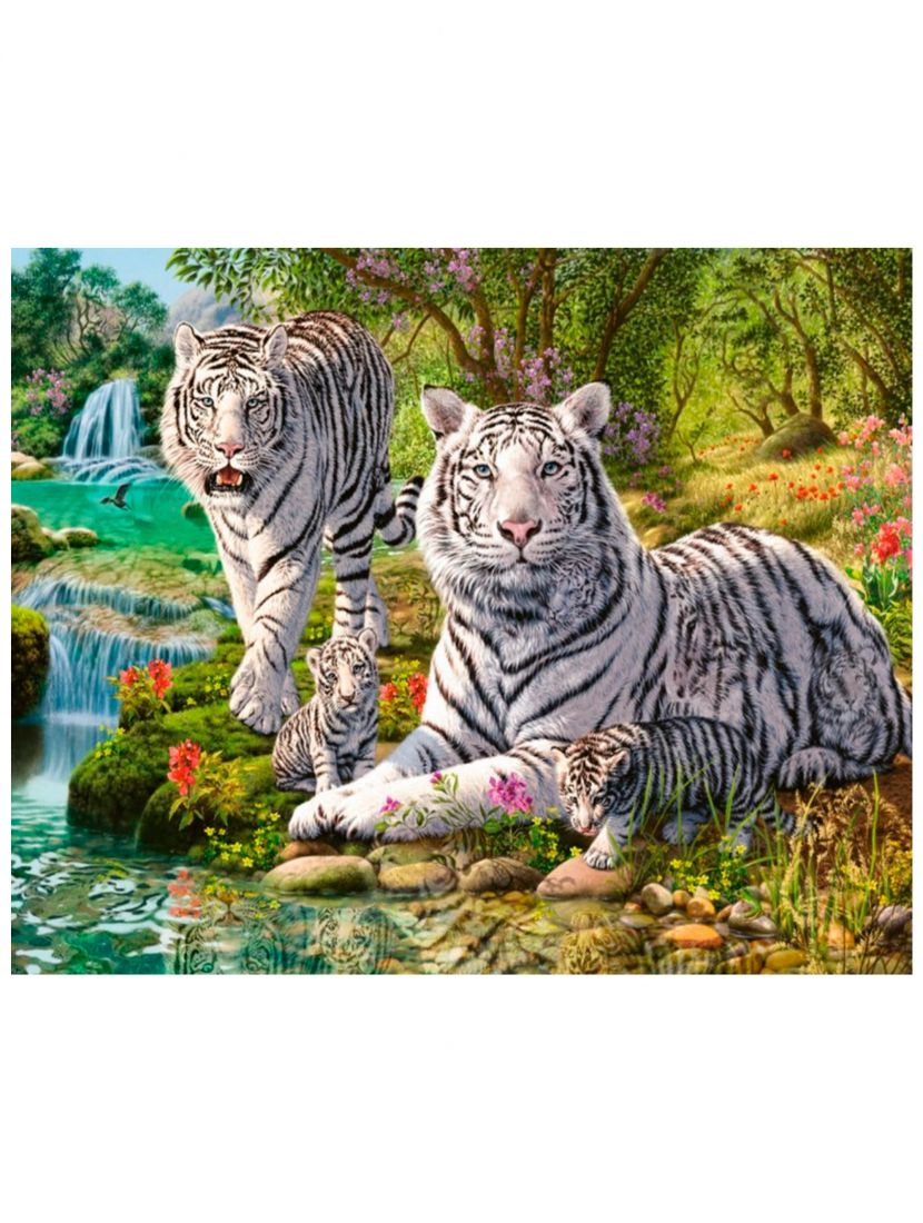 "Картина по номерам  на подрамнике ""Белый тигр"""