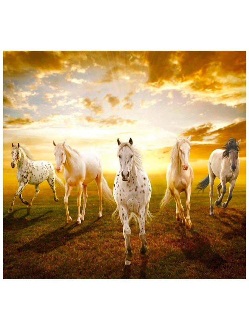 "Картина по номерам  на подрамнике ""Белые кони"""