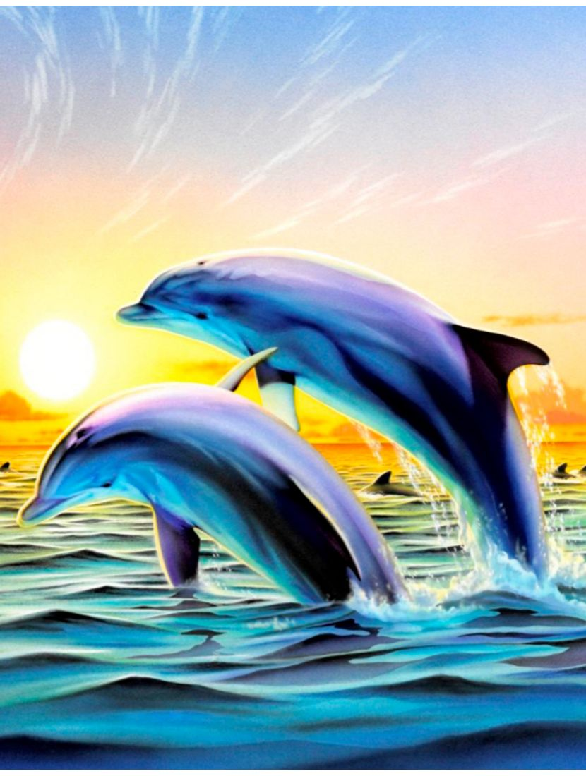 """Картина по номерам  на подрамнике """"Дельфины на закате"""""""