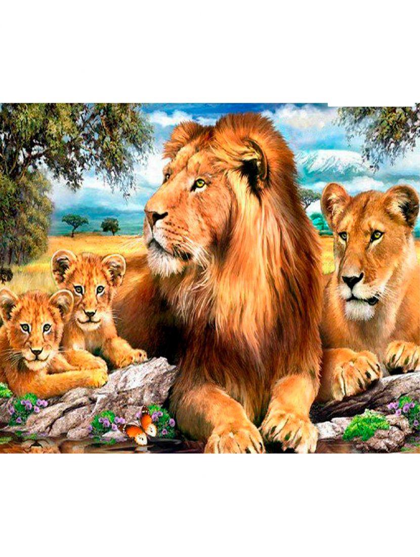 Картина по номерам  на подрамнике «Семейство львов»