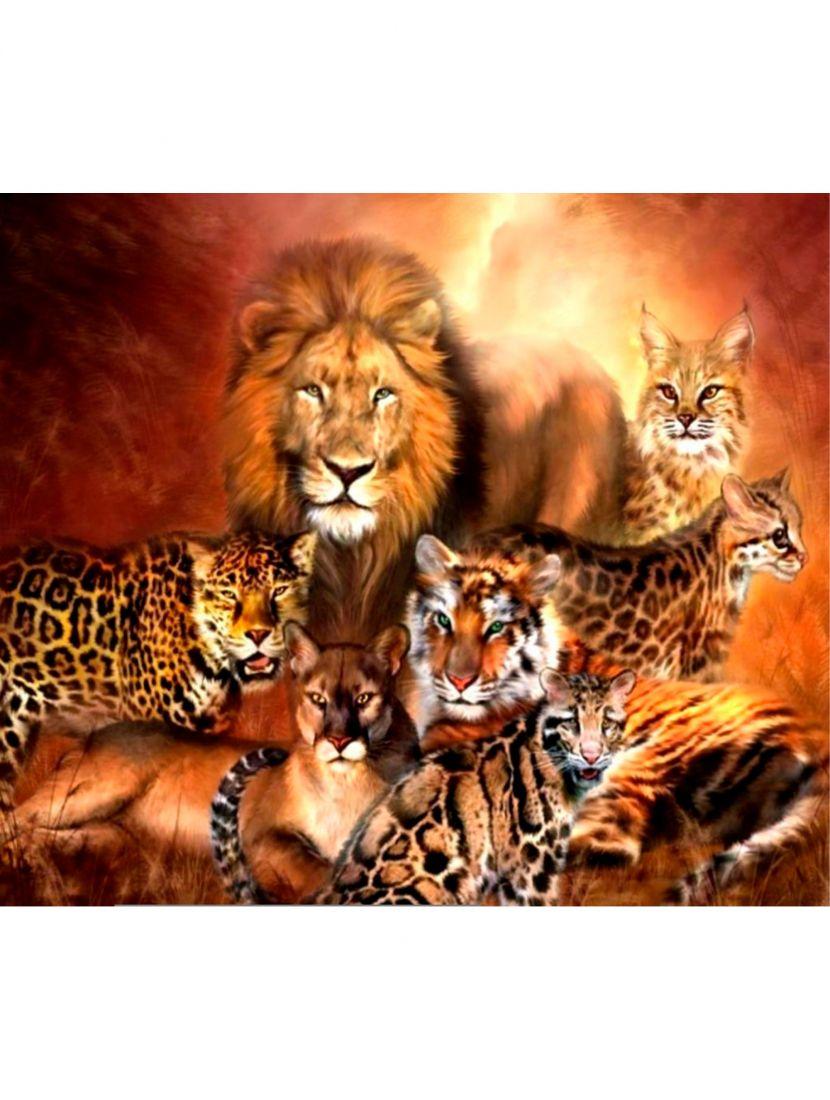 Картина по номерам  на подрамнике «Дикие кошки»