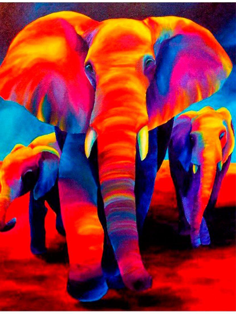 """Картина по номерам  на подрамнике """"Радужный слон"""""""
