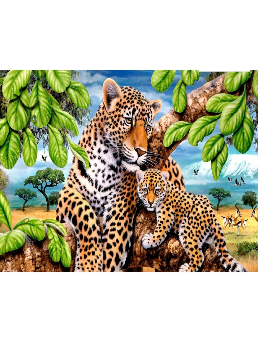 "Картина по номерам  на подрамнике ""Семейство леопардов"""