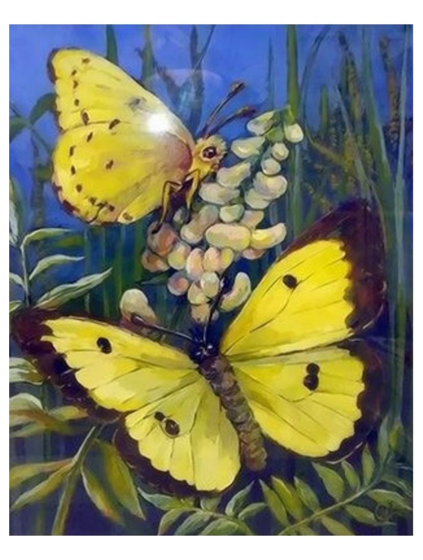 Картина по номерам «Бабочки в живописи»