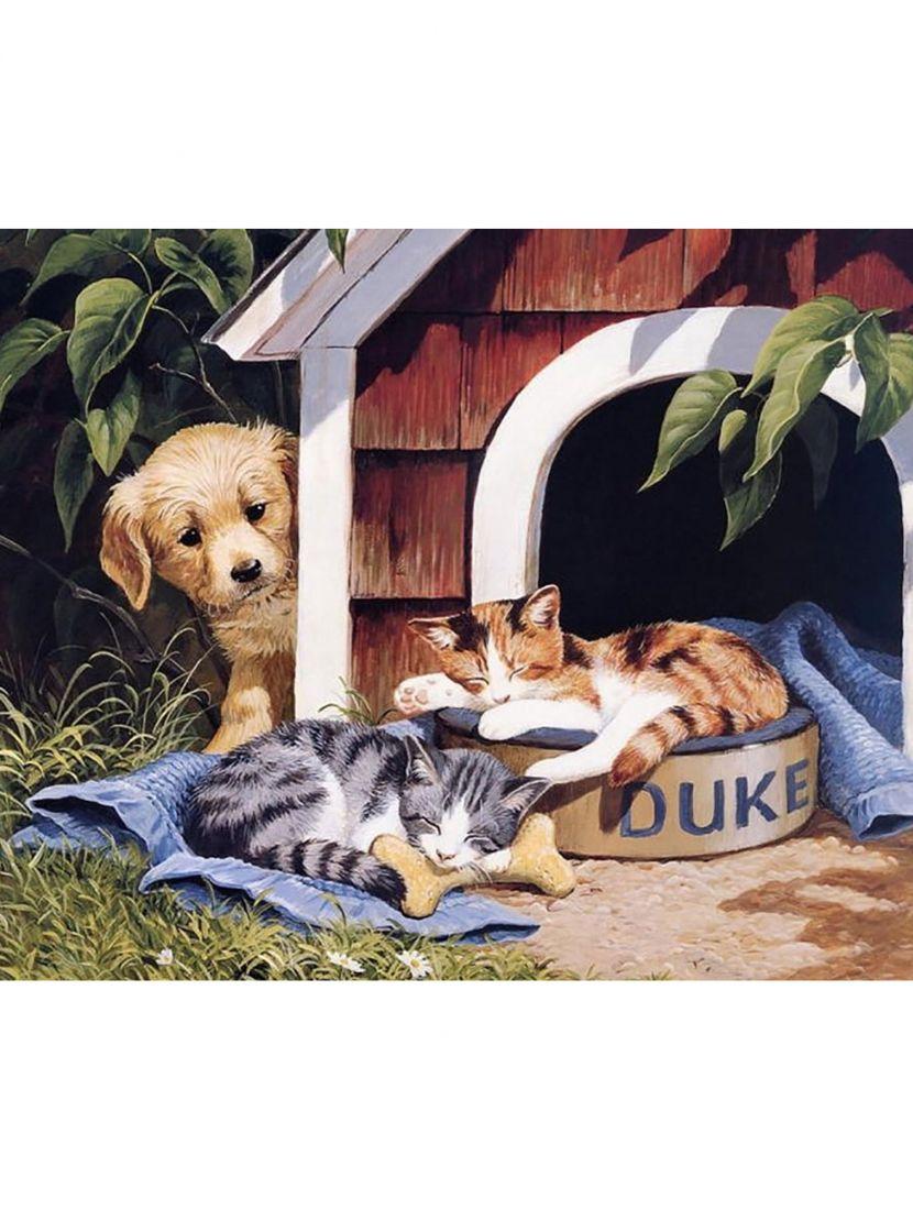 Набор для вышивания бисером «Щенок и котята»
