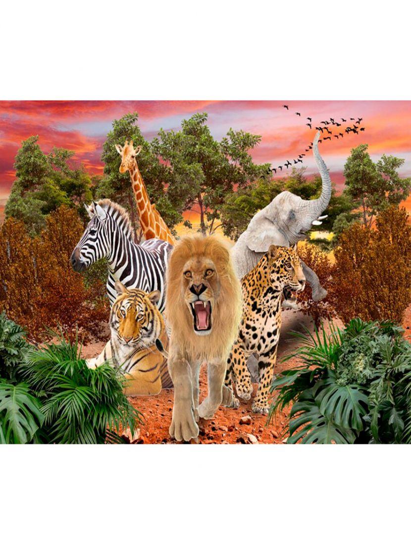 Картина по номерам  на подрамнике «Африканские животные»