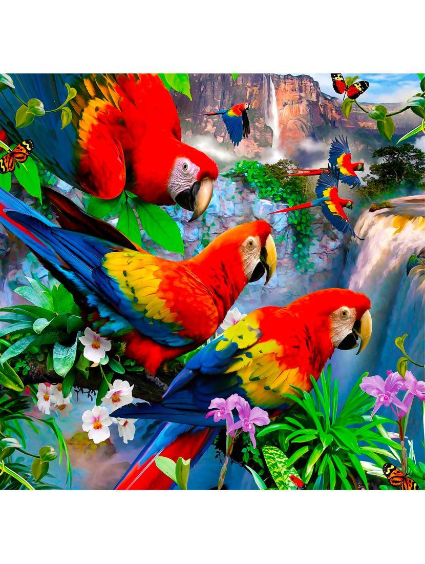 """Картина по номерам  на подрамнике """"Попугаи ара"""""""
