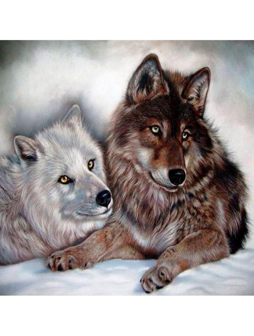 """Картина по номерам  на подрамнике """"Волчья преданность"""""""