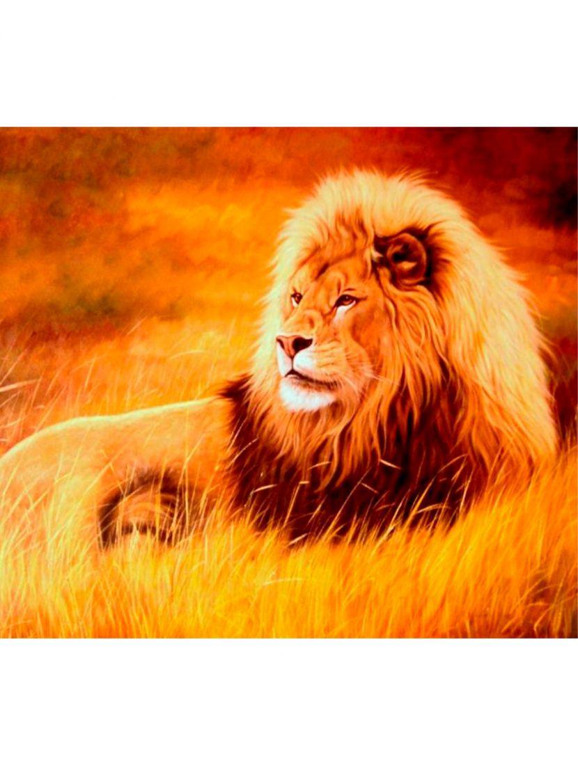 Картина по номерам «Царь зверей»