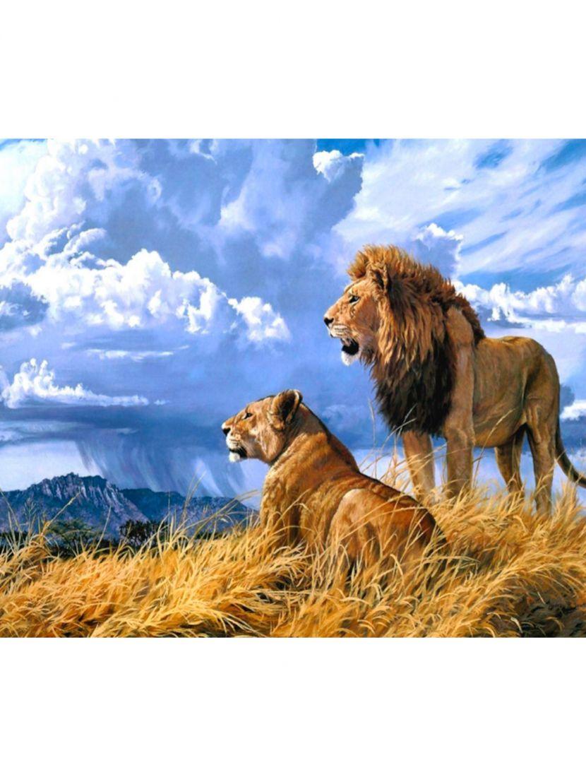 Картина по номерам «Львы»