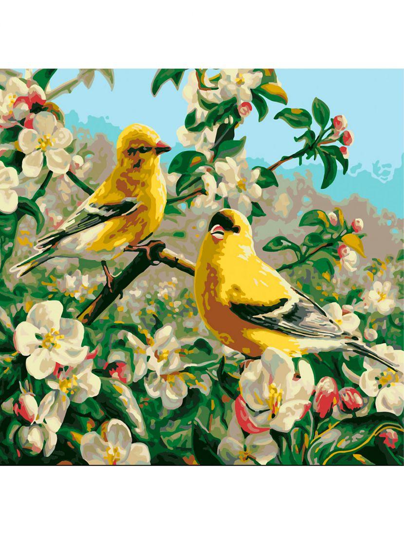 Картина по номерам «Птички на цветущей ветке»