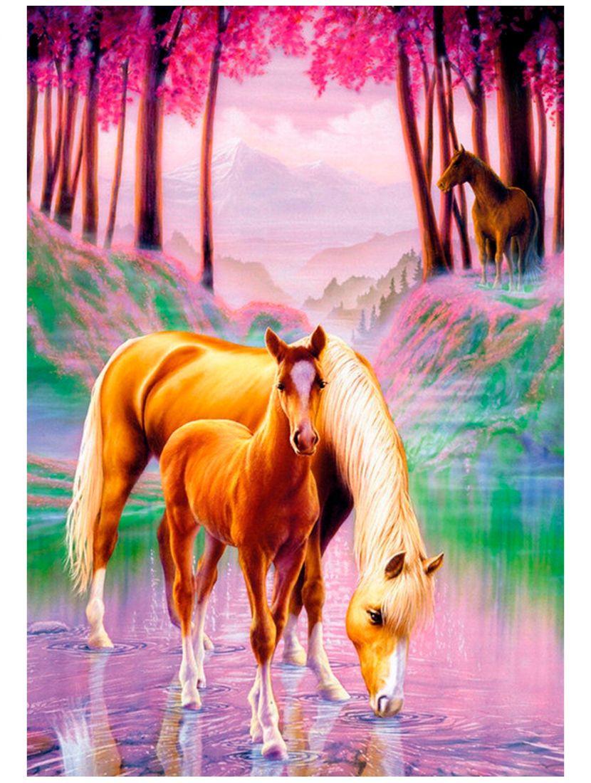 Картина по номерам  на подрамнике «Лошади»
