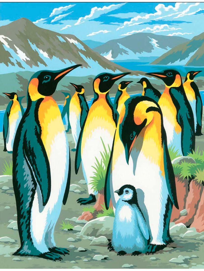 Картина по номерам  на подрамнике «Пингвины»
