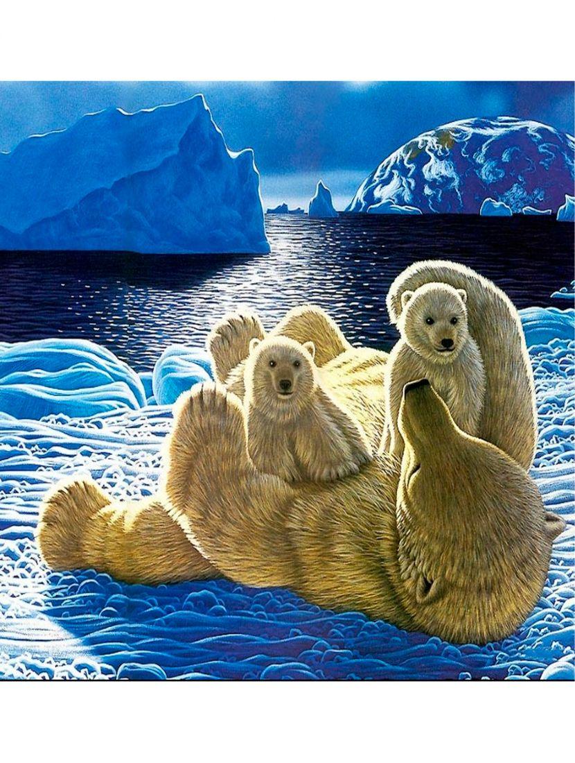 Картина по номерам  на подрамнике «Белая медведица»