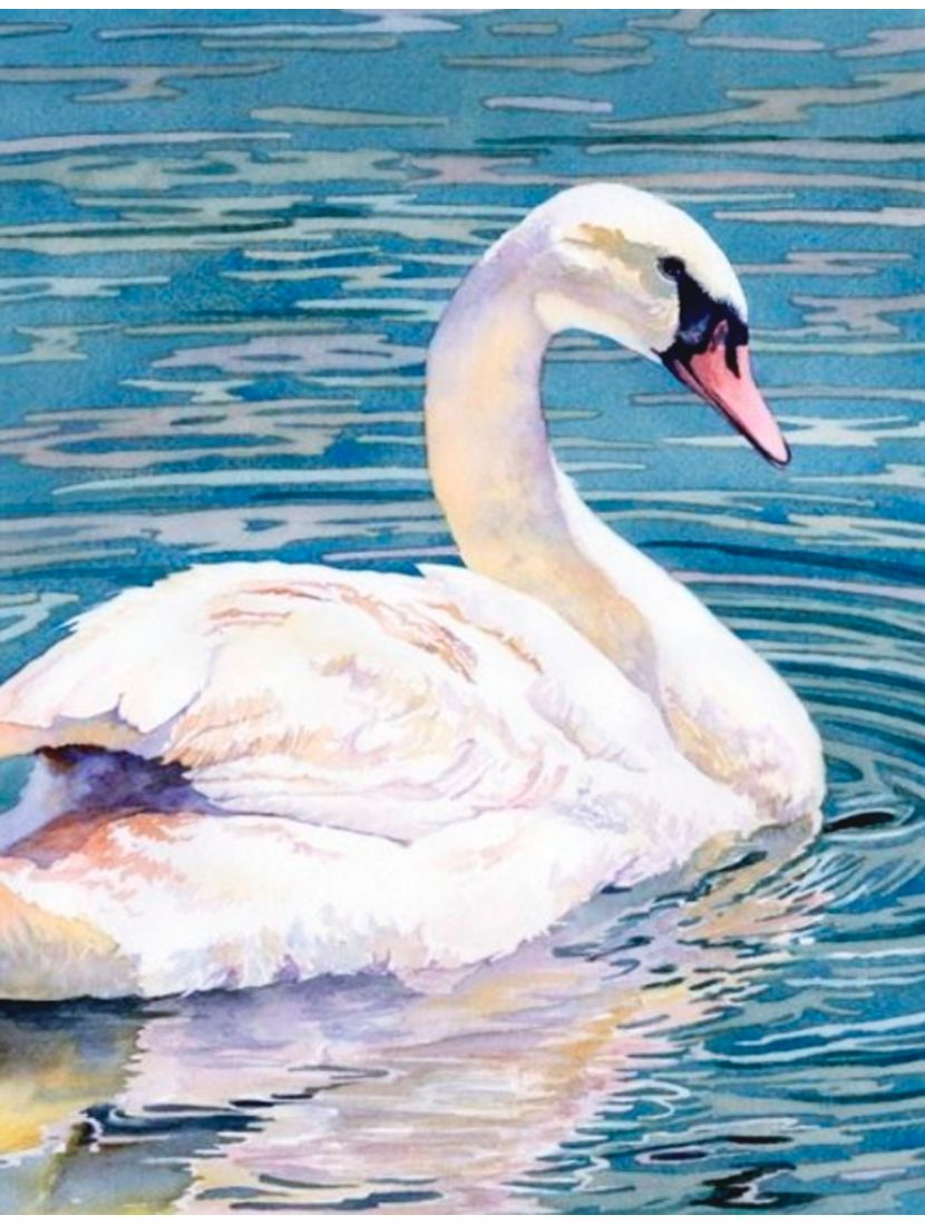 Картина по номерам  на подрамнике «Лебедь»
