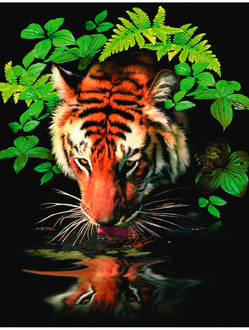 Картина по номерам  на подрамнике «Тигр»