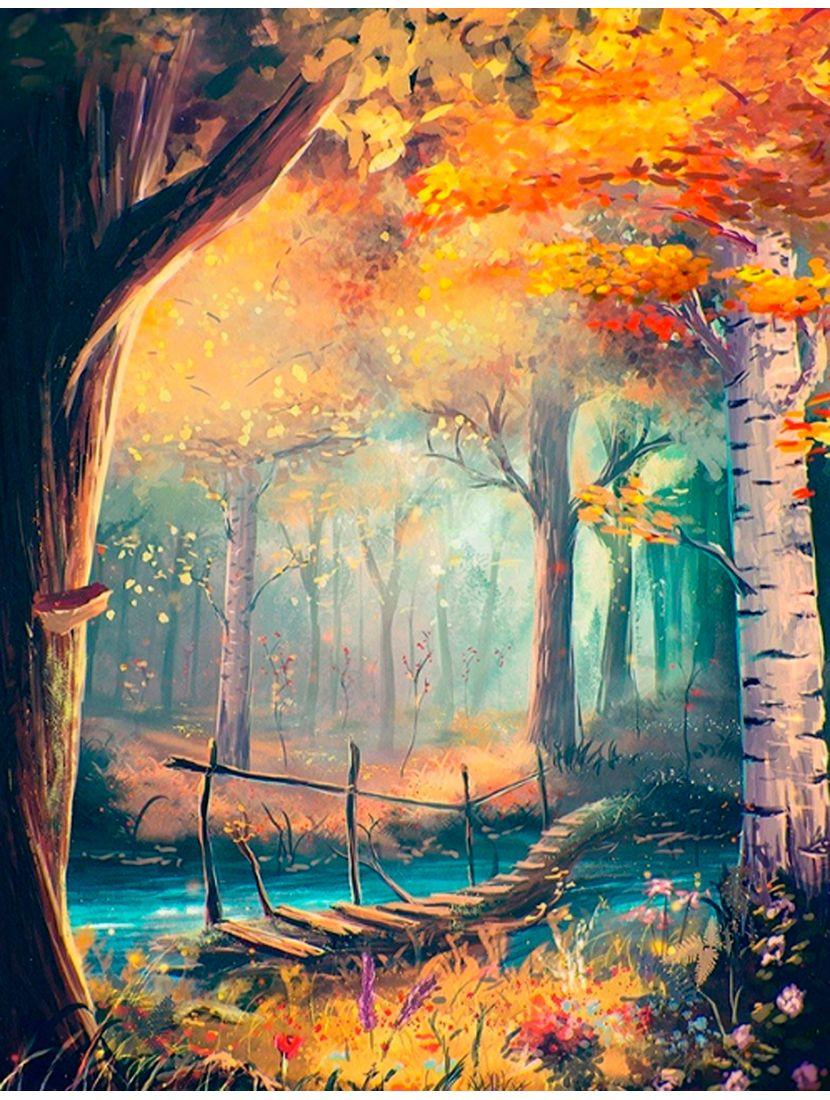 Картина по номерам  на подрамнике «Загадочный лес»