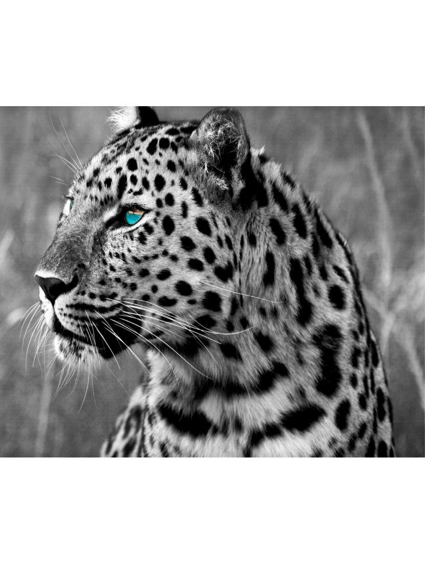 Картина по номерам  на подрамнике «Леопард»