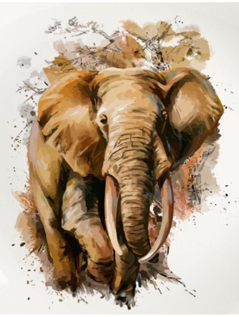 Картина по номерам  на подрамнике «Слон»