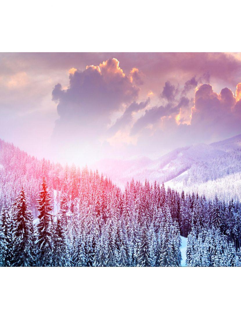 Картина по номерам  на подрамнике «Леса Сибири»