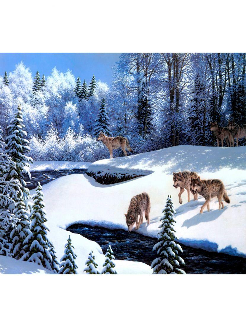 Картина по номерам  на подрамнике «Волки»