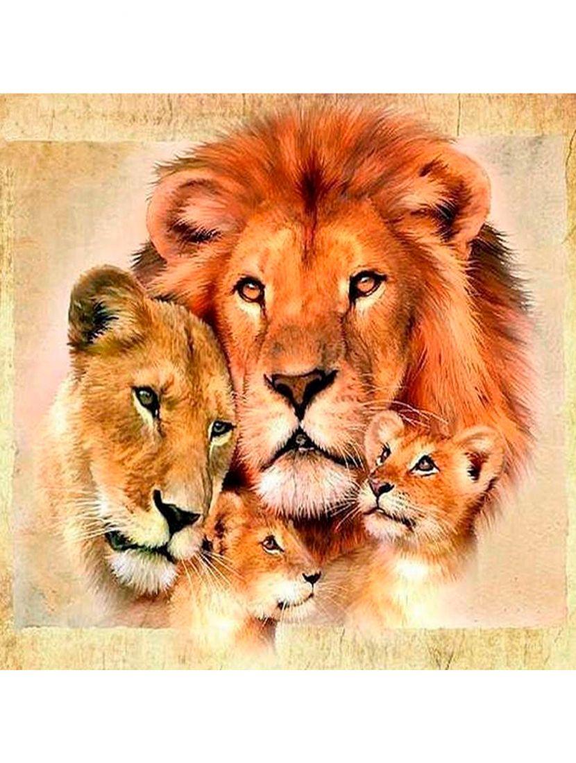 Алмазная мозаика на подрамнике «Львиная семейка»
