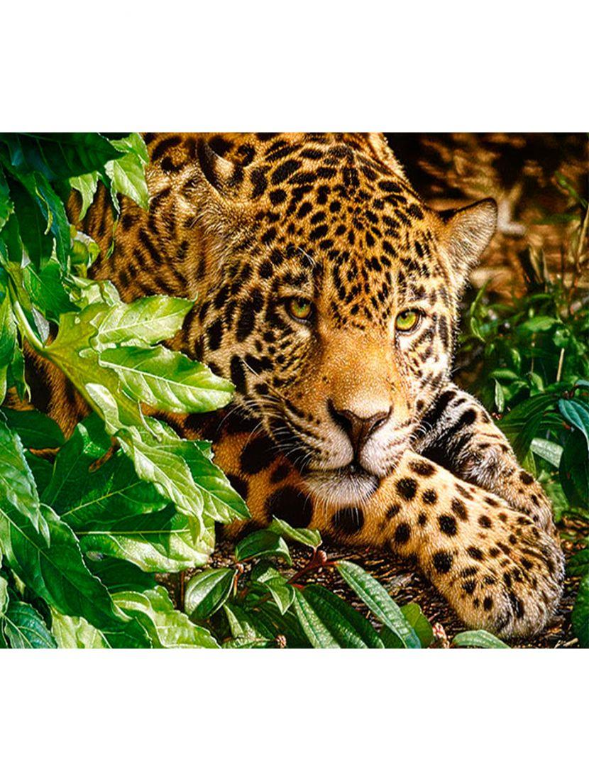 Алмазная мозаика на раме со стеклом «Леопард» подарочный вариант