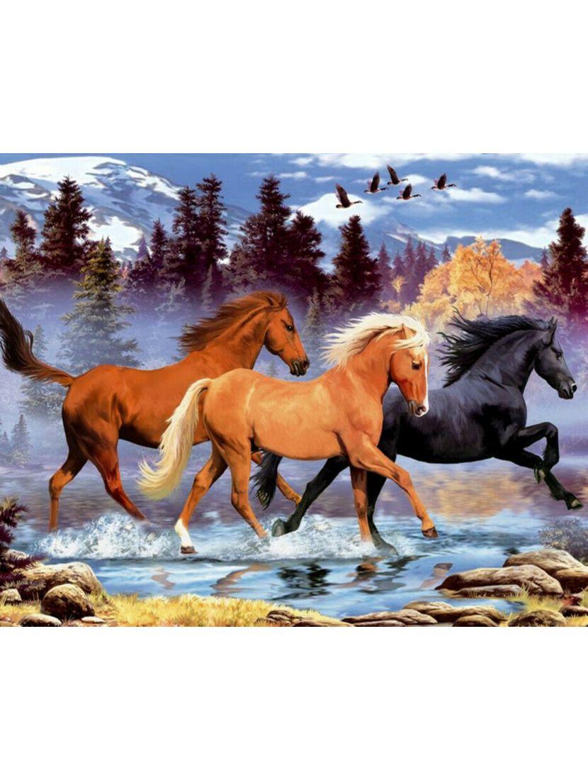 Картина по номерам  на подрамнике «Кони и горы»