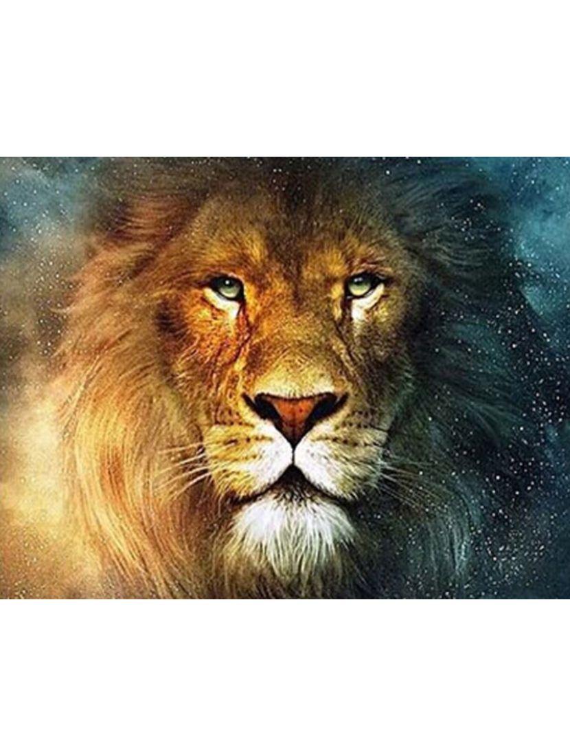 Картина по номерам  на подрамнике «Лев»