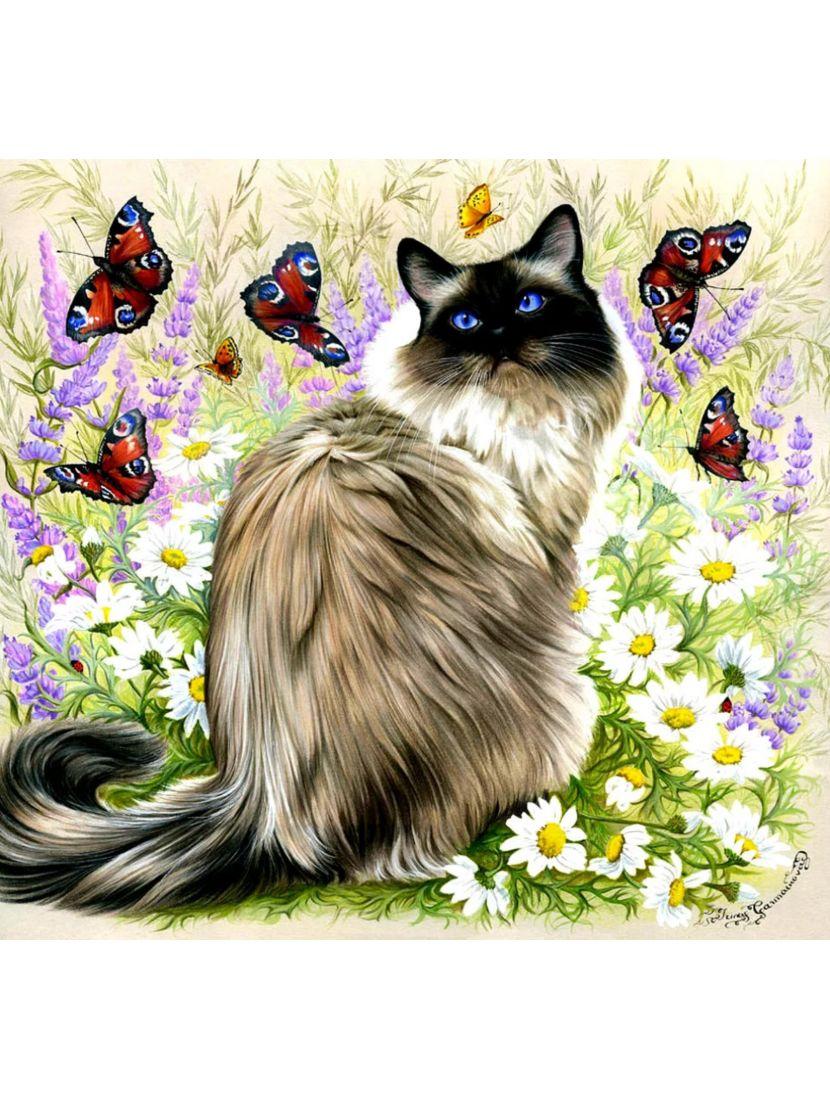 Алмазная мозаика на подрамнике «Кошка, бабочки и цветы»
