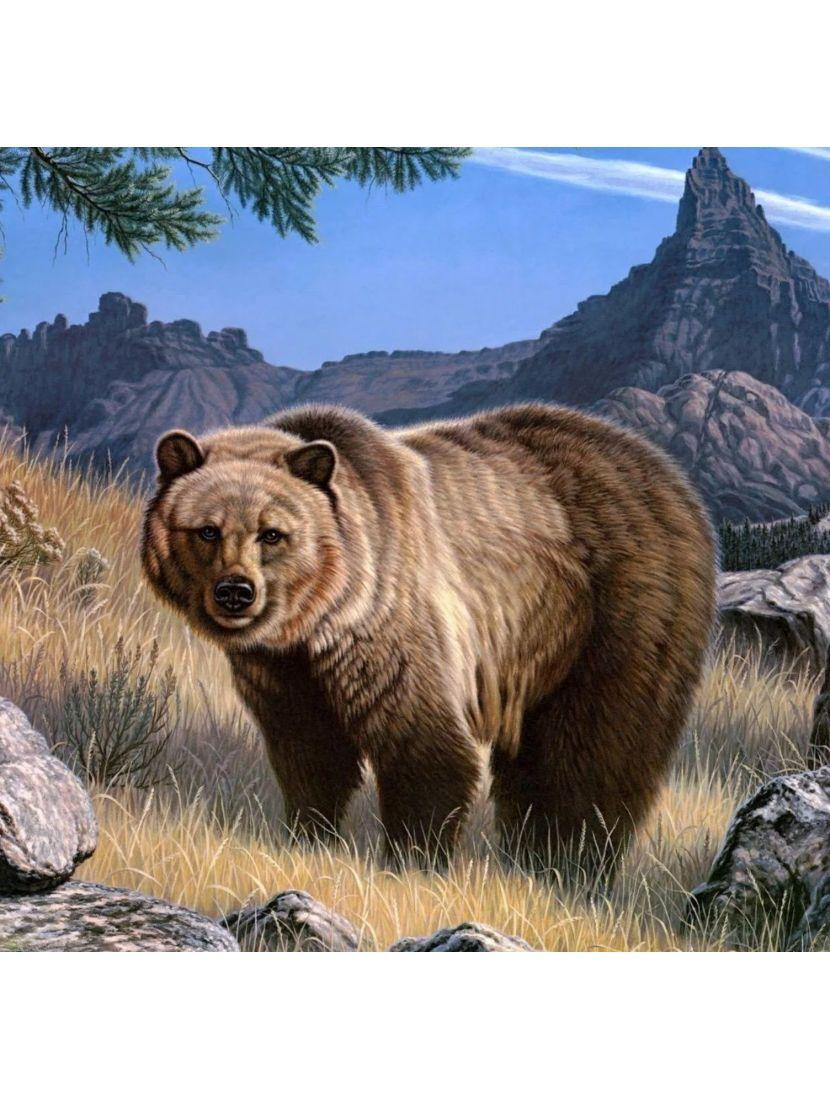 Алмазная мозаика на подрамнике «Медведь»