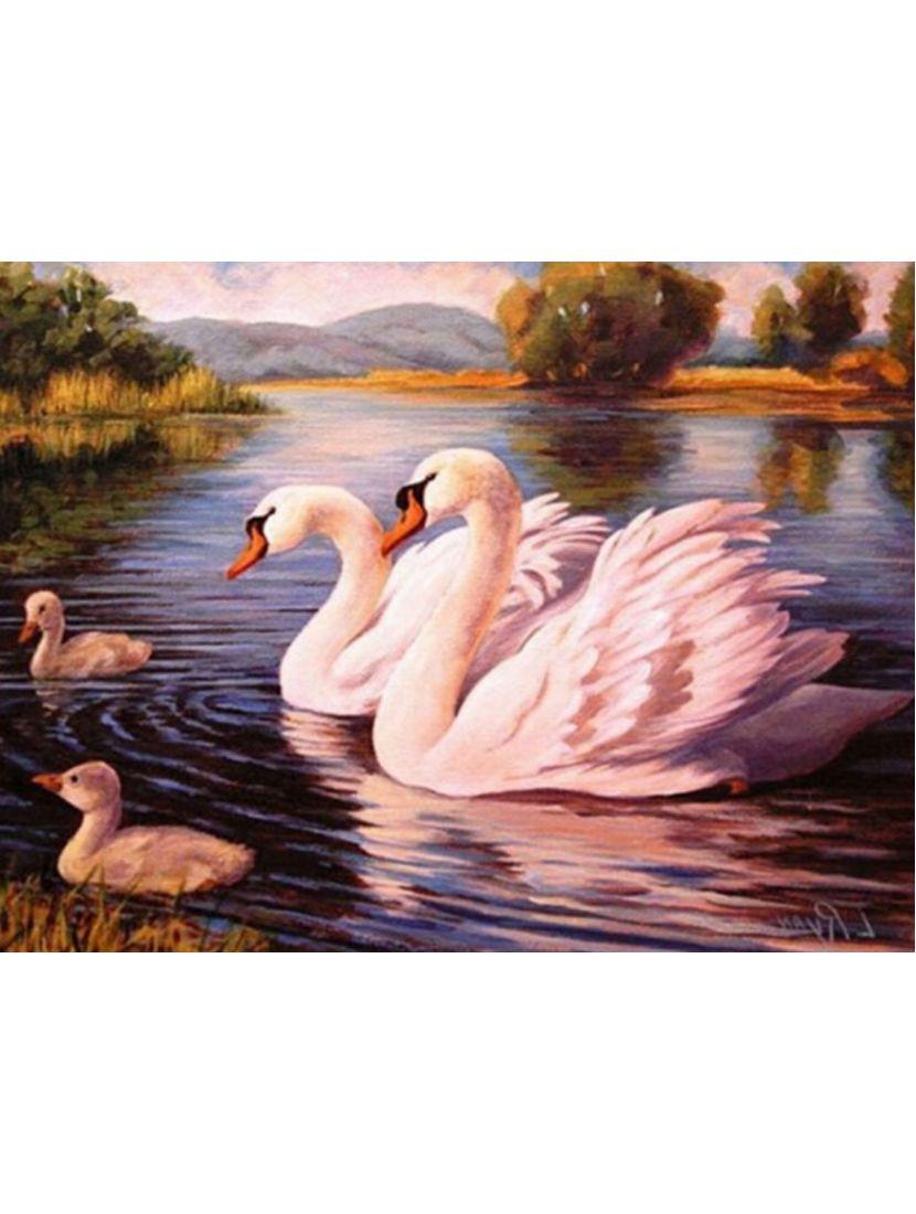 Картина по номерам  на подрамнике «Лебединая семья»