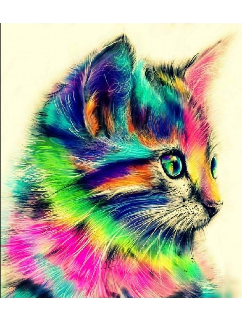 Алмазная мозаика «Радужный кот»