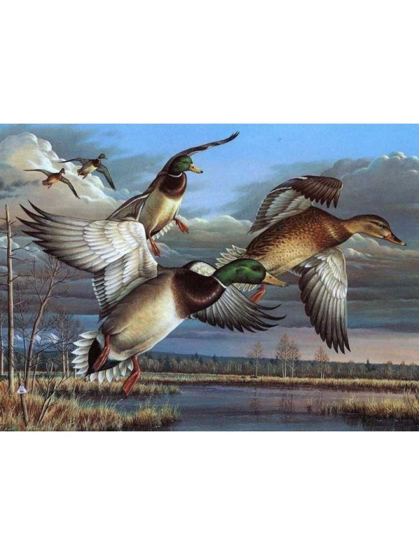Алмазная мозаика «Полёт диких уток»