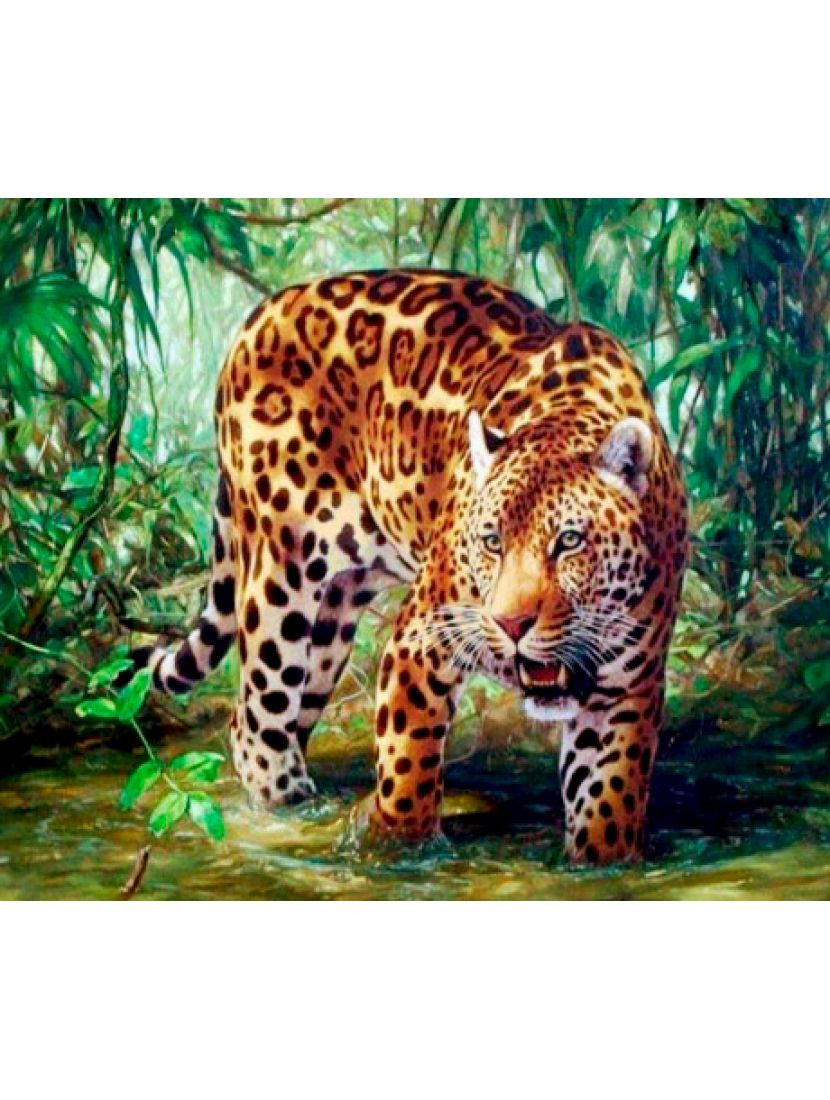 Алмазная мозаика «Ягуар»
